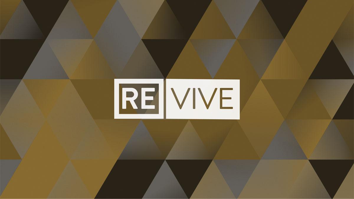 RE Vive
